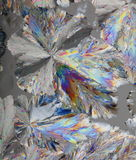Citric acid crystals macro Royalty Free Stock Images