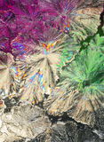 Citric acid crystals macro. Macro view of citric acid crystals, partially colored under polarized light Stock Photography