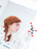 Citric acid molecular model analysis. Side-view of a student analyzing a  citric acid molecular model  in a chemistry lab Stock Image