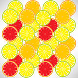Citric background Stock Photos