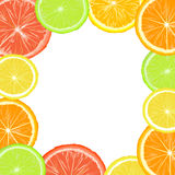 Citric frame Royalty Free Stock Image