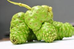 Citrifolia de Noni Fruit Morinda Imagens de Stock Royalty Free