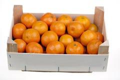 Citrinas frescas do mandarino em um mercado Fotos de Stock Royalty Free