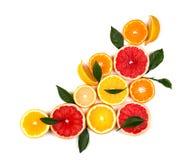 Citrinas isoladas Partes de limão, de cal, de toranja cor-de-rosa e de laranja isolados no fundo branco, com grampeamento Imagem de Stock
