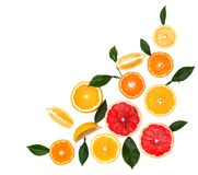 Citrinas isoladas Partes de limão, de cal, de toranja cor-de-rosa e de laranja isolados no fundo branco, com grampeamento Foto de Stock Royalty Free