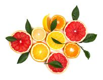 Citrinas isoladas Partes de limão, de cal, de toranja cor-de-rosa e de laranja isolados no fundo branco, com grampeamento Imagens de Stock