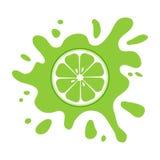 Citrino do fruto do cal, respingo verde Ilustra??o do vetor ilustração royalty free
