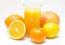 Citrino e suco de laranja Fotografia de Stock Royalty Free