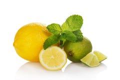 Citrino inteiro, fatias de citrino e hortelã Imagem de Stock