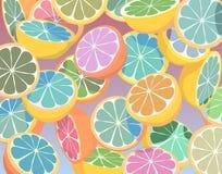 Citrinos coloridos Fotografia de Stock Royalty Free