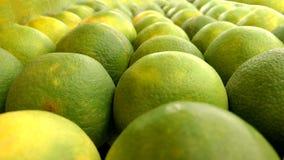 Citrinos do cal no mercado de fruto fotografia de stock