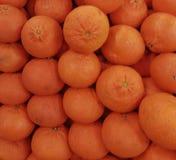 Citrinos orgânicos frescos deliciosos do satsuma Foto de Stock