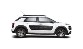 Citroen Cactus Royalty Free Stock Photo