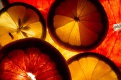Citroen en grapefruitplakken royalty-vrije stock afbeeldingen