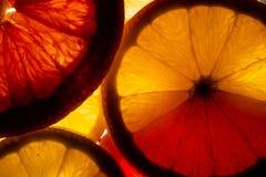 Citroen en grapefruitplakken stock foto
