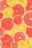Citroen en Grapefruitplaksamenvatting Stock Afbeelding