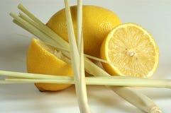 Citroen en lemongraas Royalty-vrije Stock Afbeeldingen