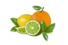 Citroen, groene die kalk en sinaasappel op witte achtergrond wordt geïsoleerd Citrusvruchtenplakken en bladeren Stock Afbeelding