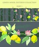 Citroen het bloeien Reeks van naadloze texturen bloeiende citroen Deel 1 stock illustratie