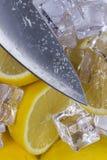 Citroen met ijs Royalty-vrije Stock Afbeeldingen