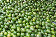 Citroen, tropisch die fruit bij Lange het fruitmarkt van Vinh wordt getoond, Mekong delta De meerderheid van de vruchten van Viet royalty-vrije stock foto's