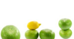 Citroen vruchten Stock Afbeelding
