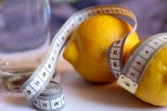 Citroen, water Detoxdieet voor gewichtsverlies Royalty-vrije Stock Fotografie