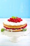 Citroencake met framboos, royalty-vrije stock afbeelding