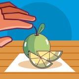 Citroencitroen natuurlijk fruit vector illustratie