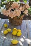 Citroenen en bloemen Stock Foto's
