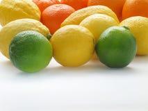 Citroenen en sinaasappel stock fotografie