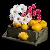 Citroenen met bloemen Stock Foto