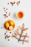 Citroenen op een plaat door oranje hazelnoten op een witte rug wordt omringd die Stock Fotografie