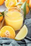 Citroenen, sinaasappelen en kalk Mandarin, mandarijn, citroen en sap Royalty-vrije Stock Afbeeldingen
