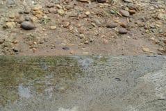 Citroengraswater royalty-vrije stock afbeelding