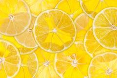 Citron éclairé à contre-jour Photo libre de droits