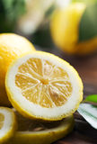 citron Arkivfoton