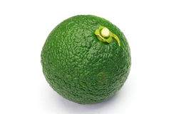 Citron Royalty Free Stock Photography