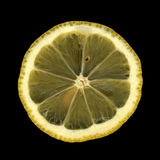 Citron Photo libre de droits