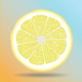 Citron royaltyfri illustrationer