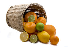 Citron. Oranges, tangerines and lemons got enough sleep from a basket on a white background Royalty Free Stock Image