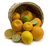 Citron. Oranges, tangerines and lemons got enough sleep from a basket on a white background Royalty Free Stock Photography
