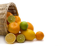Citron. Oranges, tangerines and lemons got enough sleep from a basket on a white background Royalty Free Stock Photo