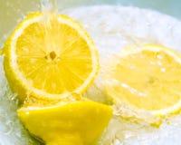 citron Image stock
