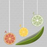 Citron ABC Photographie stock libre de droits