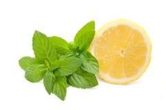 Citron avec la menthe Photos stock