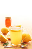 Citron chaud Photographie stock