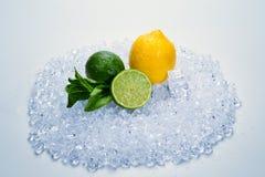 Citron, chaux et menthe sur la glace images libres de droits