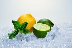 Citron, chaux et menthe sur la glace image stock
