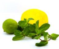 Citron, chaux, menthe sur un fond blanc photo stock